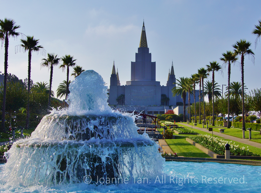 Morning view of the Mormon Temple lined with palm trees with water splashing at foreground. Blue water and green lawn, Piedmont, California.