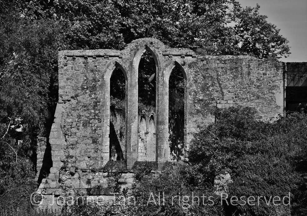 p - architecture - Ruins of an Old Cathedral, #1, B&W