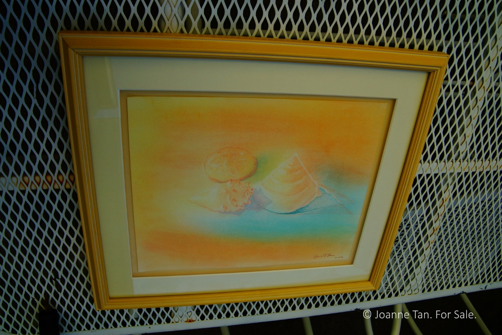 painting - pastel - Seashells & a Sand Dollar - customframed - Joanne Tan (1024x683)